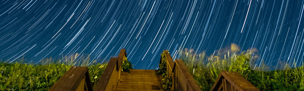 long nighttime exposure of stars streaking with the Earth's rotation, with stairs and grasses